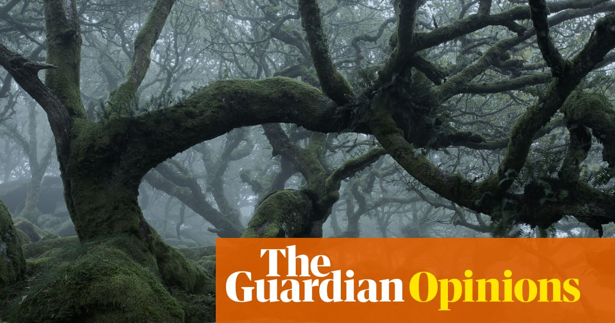 The gift we should give to the living world? Time, and lots of it