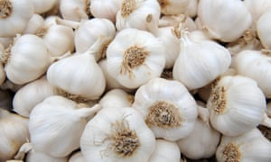 'Solent Wight' garlic bulbs.