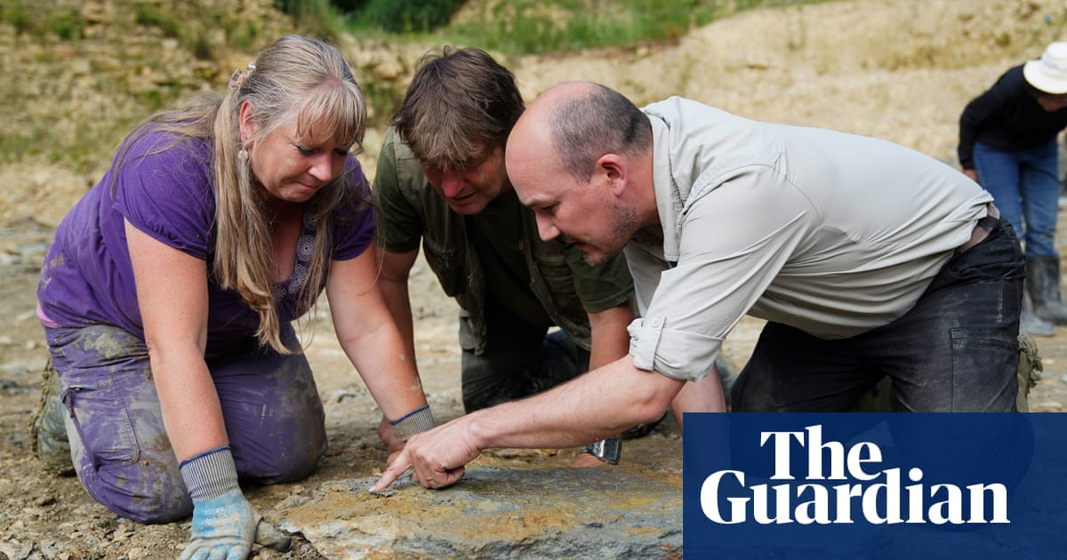 'Part-time adventurers': amateur fossil hunters get record haul in Cotswolds