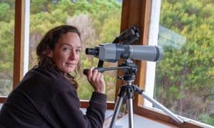 Wildlife biologist Shannon Troy monitoring orange-bellied parrots at Melaleuca, Tasmania.
