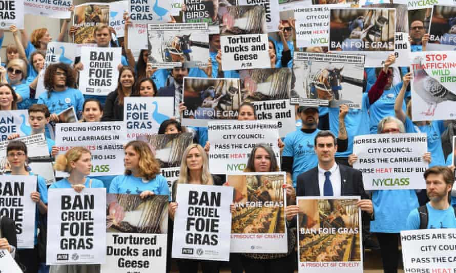 Animal rights activists rally in support of a bill to ban the sale of foie gras in front of city hall in New York, New York, on 18 June.