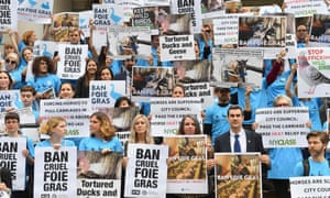 Animal rights activists hold a rally in support of a bill to ban the sale of foie gras on 18 June at New York City Hall in New York.