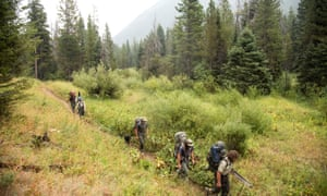 US forest service trail crew on a backpacking trip into the Lee Metcalf Wilderness Area in 2018. The crew is responsible for repairing trails and bridges in the backcountry.