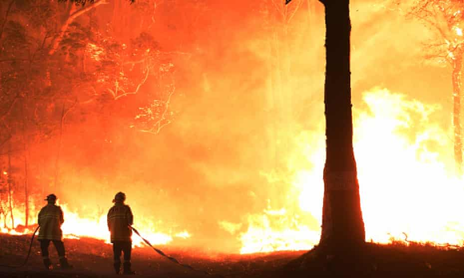 firefights confront wall of flame during black summer fires