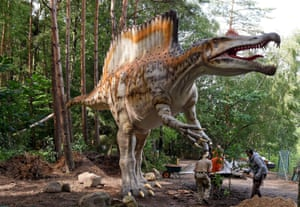A life reconstruction of the famous Spinosaurus. The original fossils of this animal were destroyed by a bombing raid in 1944.