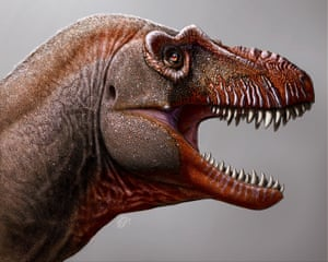 A handout photo made available by the University of Calgary and Royal Tyrrell Museum shows an artist's impression of the newly discovered species.