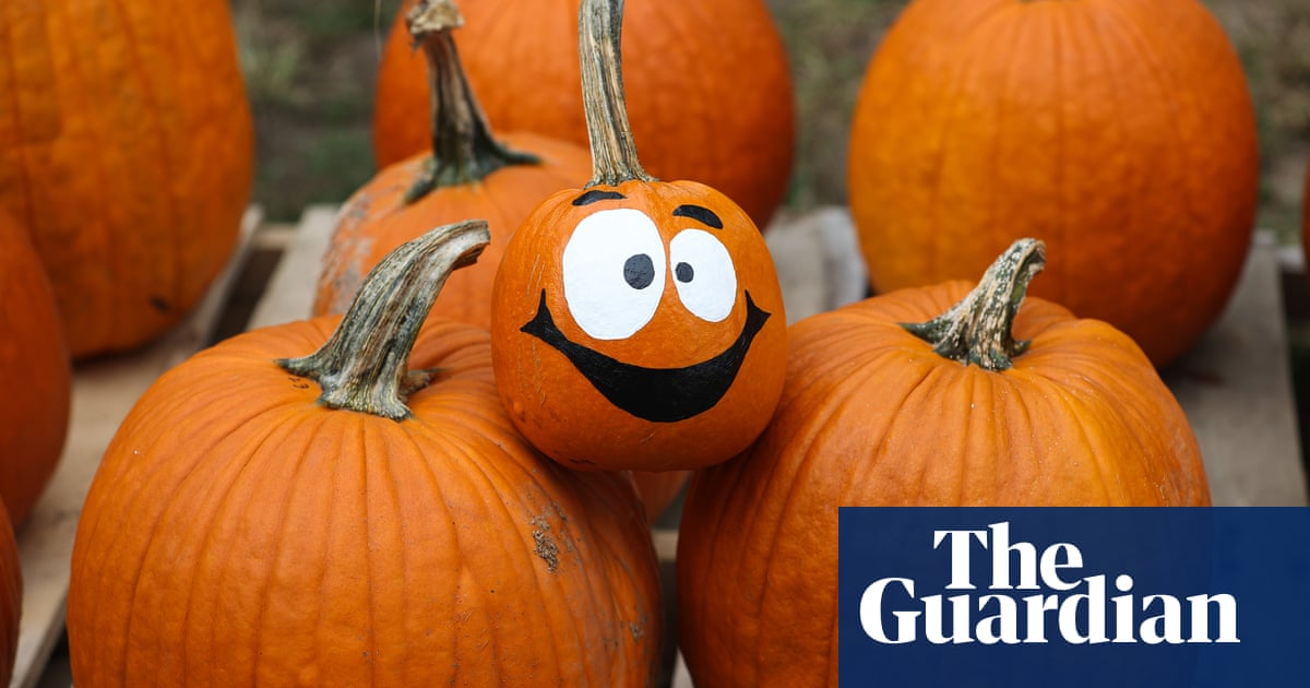 Outdoor films and Covid-safe candy trails: readers' Halloween plans