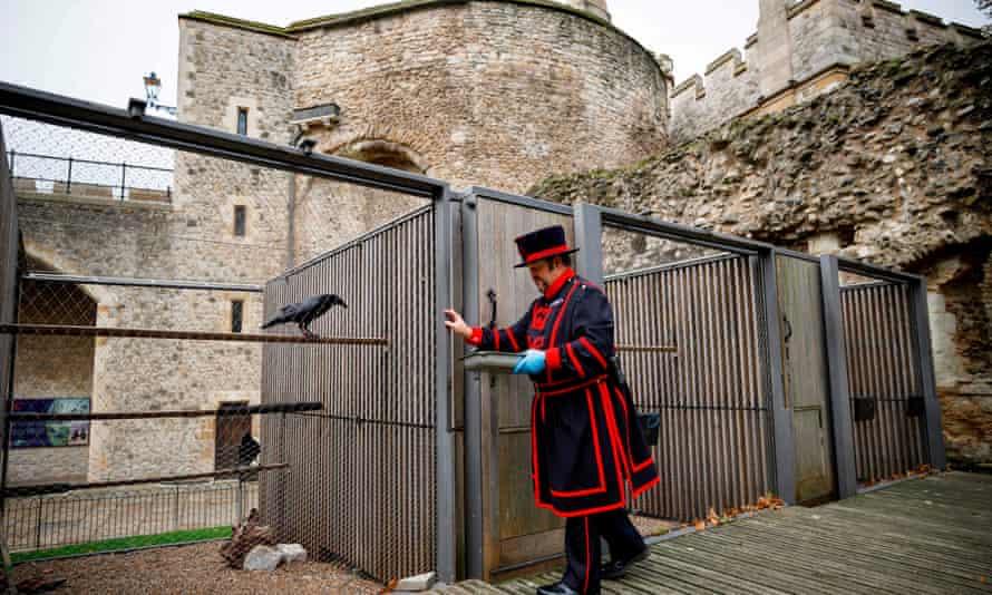 Yeoman Warder Ravenmaster Chris Skaife