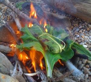 Coastal Survival Dorset food foraging course