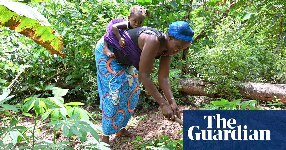 'Corporate colonization': small producers boycott UN food summit