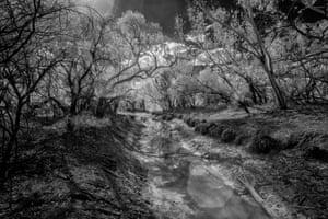 Thouringowa Waterhole