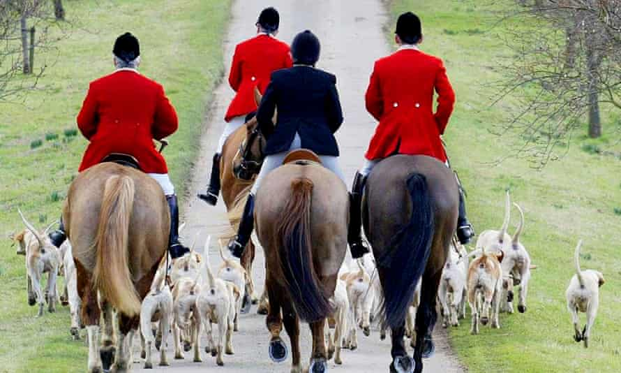 Riders and hounds set out on a hunt