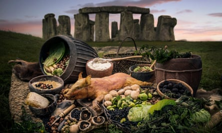 Some of the food that would have been eaten by the builders of Stonehenge.