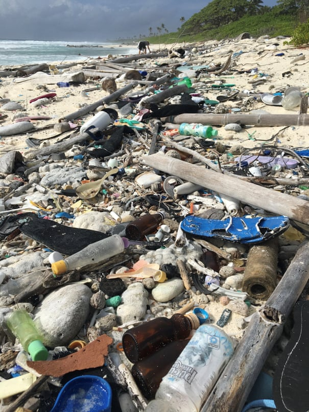 414 million pieces of plastic found on remote island group in Indian