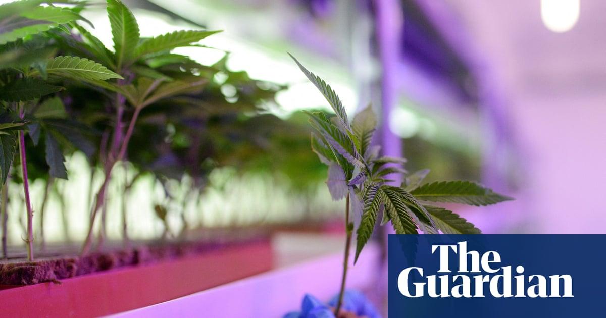 New York lawmakers reach agreement to legalize recreational marijuana