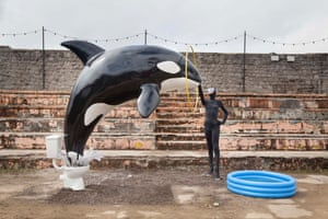 A killer whale jumps out of a toilet in Banksy's new work
