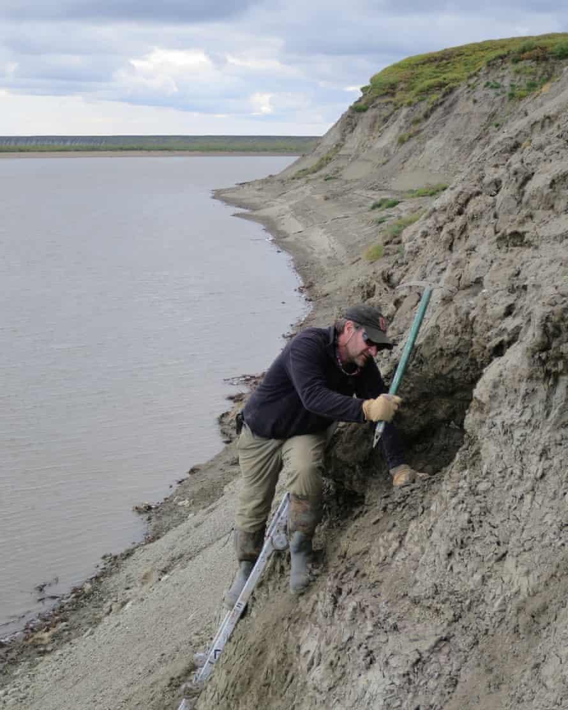 Beberapa fosil yang ditemukan di Kutub Utara seukuran serpihan ketombe