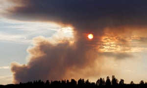 A wildfire in Sweden last week, one of an epidemic