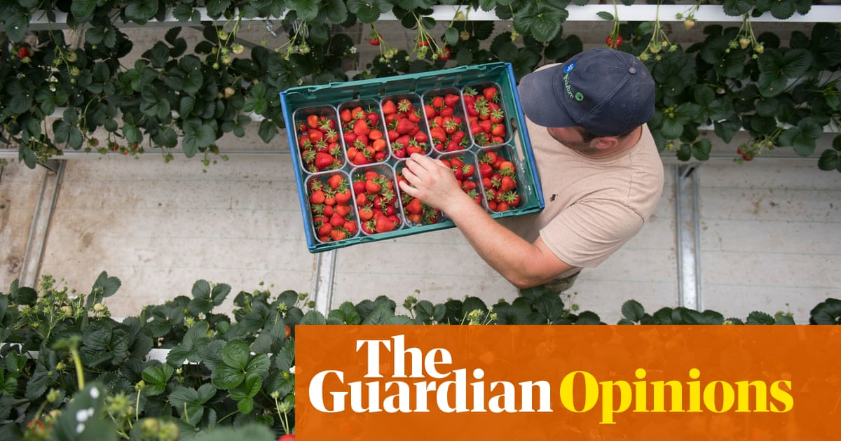 The UK's summers are getting hotter – and that puts low-paid workers at risk