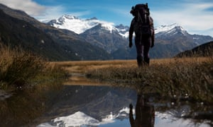 A walker in New Zealand's famous Southern Alps. A government report says growing numbers of visitors threatens the region's natural beauty.
