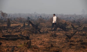 Indonesia's President Joko Widodo inspecting a peatland clearing that was engulfed by fire in Banjar Baru in southern Kalimantan province on Borneo island.