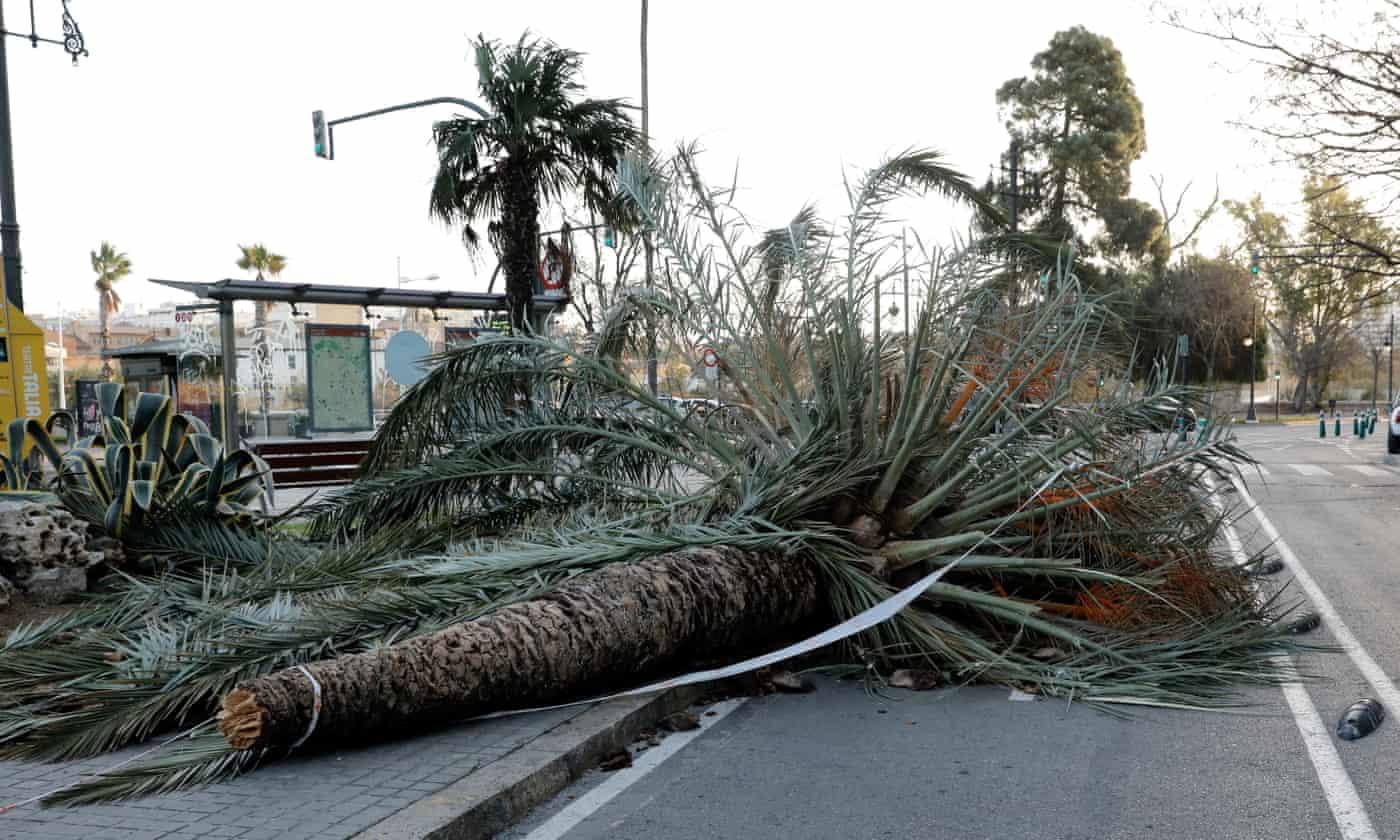 Storms Elsa and Fabien leave nine people dead across Europe