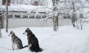 Kusamo, Finland, by Paula Jakobsson.