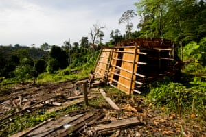 Bulldozers clear some of the last tracts of lowland forest in the Leuser ecosystem