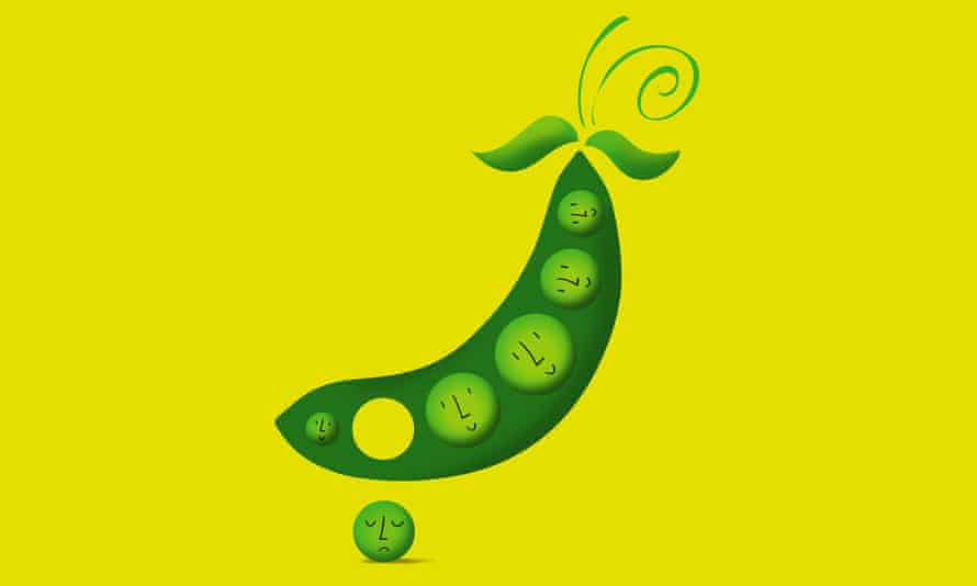 Illustration of pea falling out of a pod