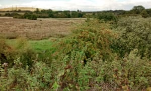 The rough meadows earmarked for HS2's new Birmingham interchange station, Middle Bickenhill.