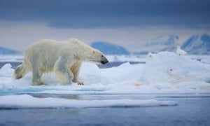 This year's annual minimum of the Arctic sea ice tied with the second-lowest extent on record.