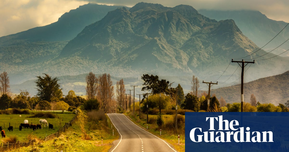 Bots and scalpers: desperate Kiwis try everything to get into Fortress New Zealand
