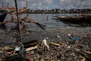 A boy jumps from a boat into the heavily-polluted Pasig River in Manila, Philippines