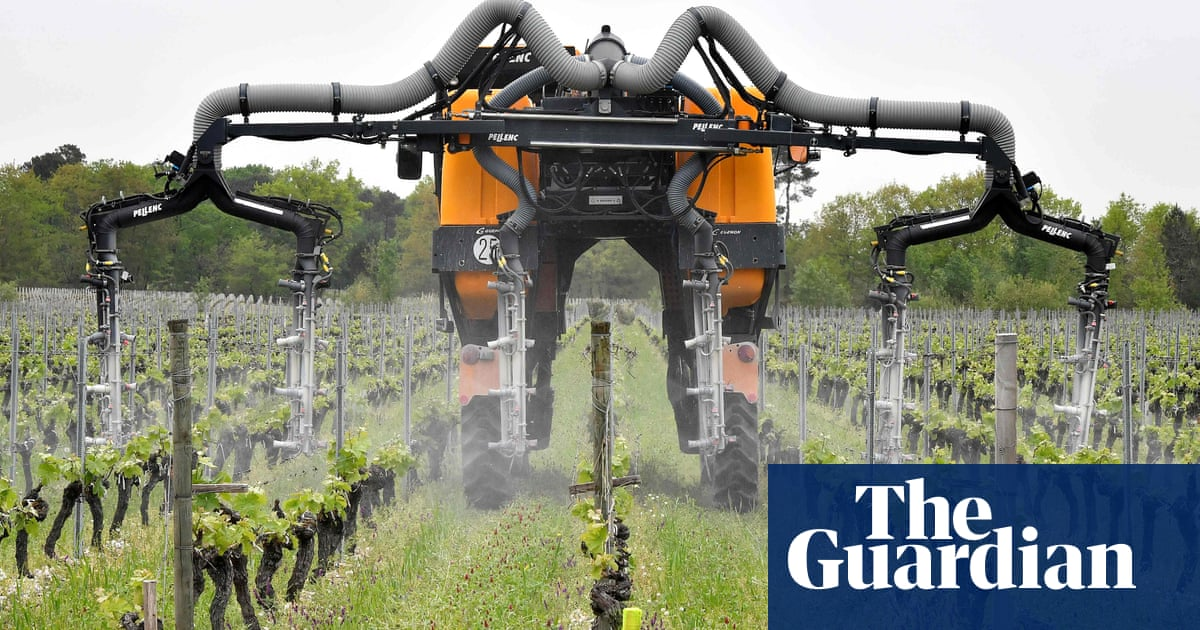 Has wine gone bad? | News | The Guardian