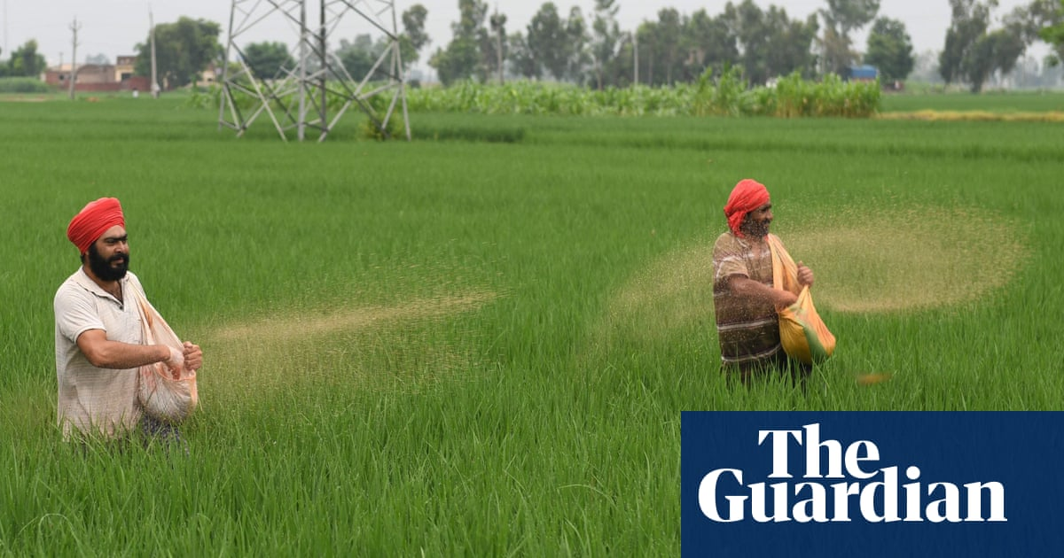 Fears global energy crisis could lead to famine in vulnerable countries
