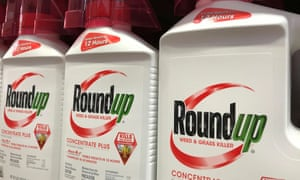 The World Health Organization reported a likely link between Roundup and cancer in 2015.