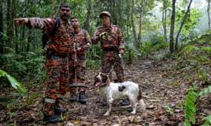 Members of a search team in the forest near the Dusun resort where the Quoirins have been staying