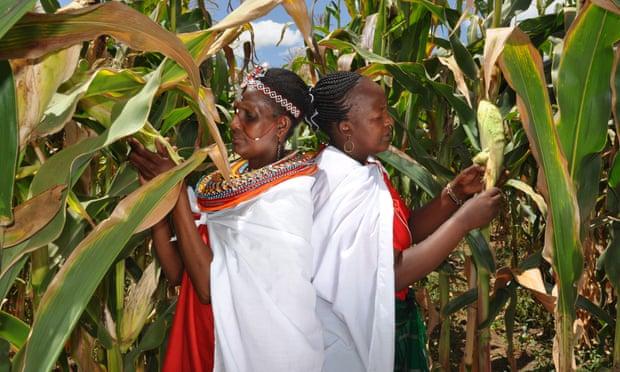 Kenya Climate Change