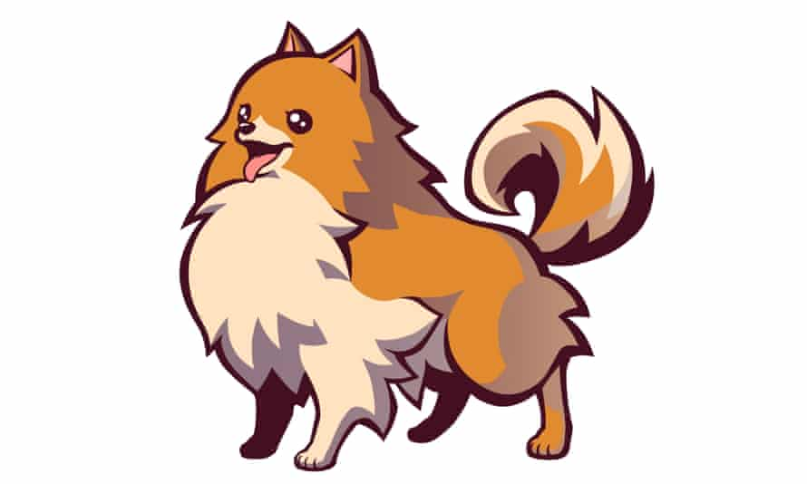 Missile – the best name you can possibly give to a supernatural Pomeranian