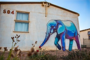 Trunk Bombs South Africa S Elephant Street Art In Pictures Art