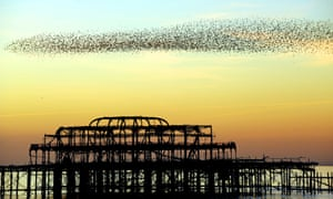 Brighton's neglected West Pier has fallen victim to numerous fires, and the salty sea below.
