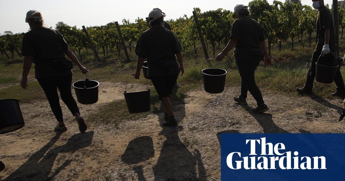 Italian region bans farm work during hottest hours after Malian worker dies