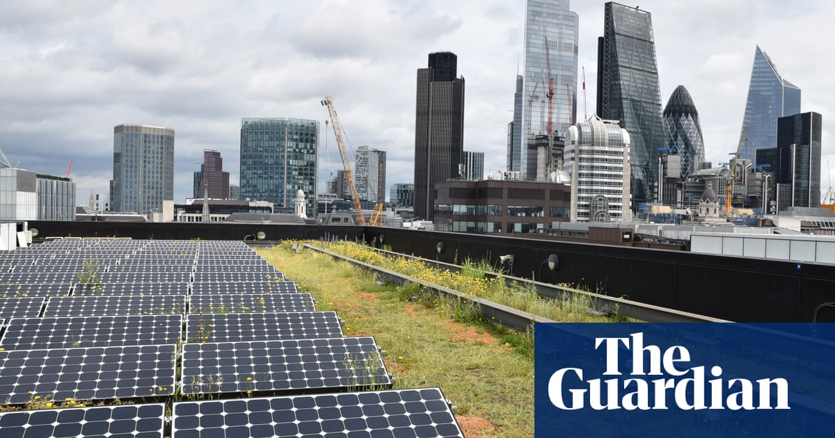 Orchid thought to be extinct in UK found on roof of London bank