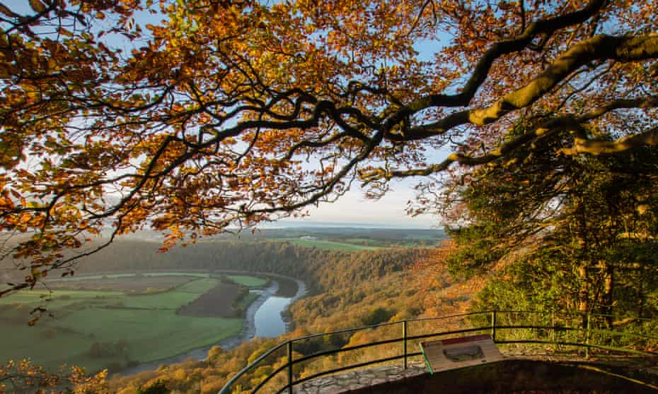 Eagle's Nest viewpoint in the Forest of Dean.
