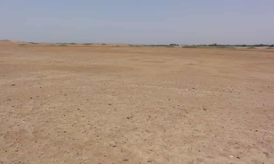 the desert at the site of tanis in egypt