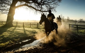 Upper Strensham, England. Sam Drinkwater rides Howling Milan as they return from the Granary stables