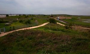 The RSPB's Rainham Marshes bird reserve