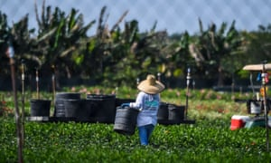 A plant nursery in Homestead. Zip code 33034, which covers parts of the rural but quickly developing cities of Homestead and Florida City, plus some unincorporated areas, is America's poorest.