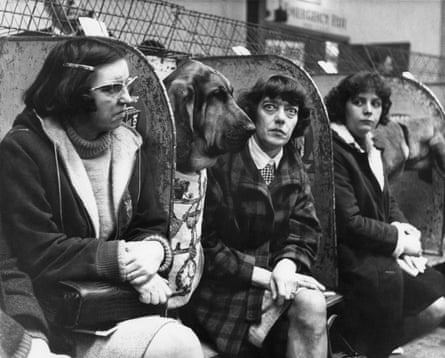 Bloodhound, Manchester dog show, 1966.