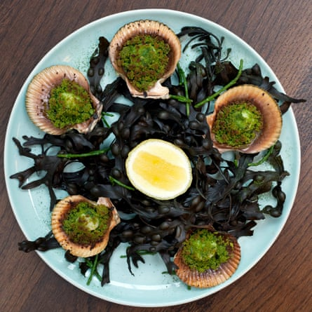 Luca's herb crusted queenie scallops.